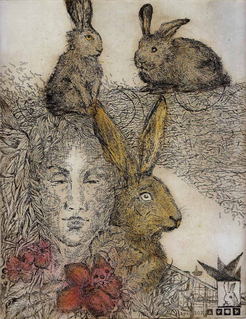 króliki w
